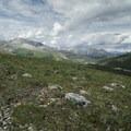 Entering an alpine meadow. - Summit Ridge Trail