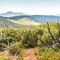 The rolling hills of Laguna Mountain Recreation Area.- Foster Point