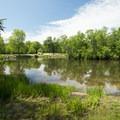 Scottville Riverside Park.- Pere Marquette River: Indian Bridge to Scottville Riverside Park