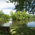 A bench in the picnic area at Scottville Riverside Park.- Pere Marquette River: Indian Bridge to Scottville Riverside Park