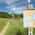 Trails are well marked with plenty of signage.- Ludington State Park Hiking Trails