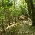 Hiking along the Ridge Trail.- Ludington State Park Hiking Trails