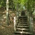 Several stairs can be found on the Ridge Trail.- Ludington State Park Hiking Trails