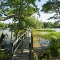The boardwalk and bridge on the Lost Lake Trail.- Ludington State Park Hiking Trails
