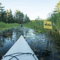 Canoe trail signs mark the way.- Ludington Canoe Trail