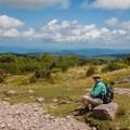 Trail Junction near Rhododendron Gap. - Wilburn Ridge Loop via Pine Mountain + the Appalachian Trail