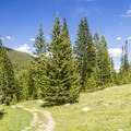 Timberline Lake Trail.- Timberline Lake Hike