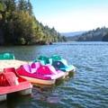 Colorful pedal boats docked in Loch Lomond.- Loch Lomond Paddling