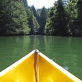 View from a kayak out on Loch Lomond heading into one of the narrow coves.- Loch Lomond Paddling