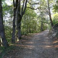 A scenic spot along the Highland Trail.- Highland Loop