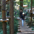 Visitors are able to cross the canopy on sky bridges, rope swings, nets, plank walkways and other elements.- Mount Hermon Aerial + Zipline Adventures