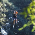A zip line on the Redwood Canopy Tour course.- Mount Hermon Aerial + Zipline Adventures