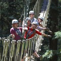 A group crossing the sky bridge together on the Redwood Canopy Tour course.- Mount Hermon Aerial + Zipline Adventures