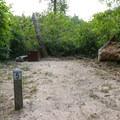 Site 5.- Alder Trail Camp