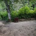 Site 6.- Alder Trail Camp