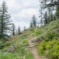 The Mickinniack Trail. - Mickinnick Trail