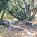 There are several opportunities for hikers to rest in the shade.- Desert View Trail via Burnt Rancheria Campground