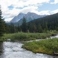 Looking back down the creek.- Smutwood Pass