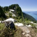 Looking back toward one of the many peaks descended.- West Lion Hike via the Howe Sound Crest