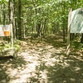 The entrance to the Ludington School Forest Trials.- Ludington School Forest Trails