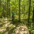 Riding along the green connector trail.- Ludington School Forest Trails