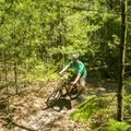 The bike trails are all well groomed singletrack.- Ludington School Forest Trails