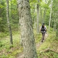 Hiking in the Nordhouse Dunes.- Lake Michigan Recreation Area + Nordhouse Dunes Wilderness Area