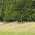 Hammocks are popular lounge items at the dunes.- Lake Michigan Recreation Area + Nordhouse Dunes Wilderness Area