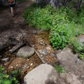 Numerous creek crossings and meadows on the way to North Dome. - North Dome + Indian Rock Via Porcupine Creek Trailhead
