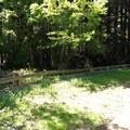 Meadow along the Stream Trail.- Redwood Regional Park