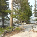 Tent cabins at Vogelsang. - Vogelsang High Sierra Camp