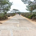 The trail follows a paved road for the first half mile.- South Fork Trail to Broken Hill Overlook