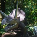 Nineteen different dinosaur sculptures are set along the park's walking path.- Prehistoric Gardens
