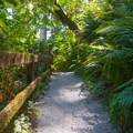The short path around the sculptures is wheelchair-accessible and family-friendly.- Prehistoric Gardens