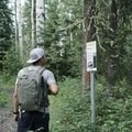 Interpretive signs provide great background to the diversity within the boreal forest.- Fort Nelson's Demonstration Forest