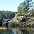 Low tide often offers the most interesting views of the shore and water beneath. - Lasqueti Islands Coast Paddle