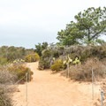 A typical section of the trail.- Razor Point Trail