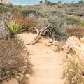 Razor Point Trail has great views of the Pacific Ocean.- Razor Point Trail