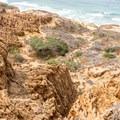 Razor Point sits 150 feet above the crashing waves and eroding sandstone cliffs.- Razor Point Trail