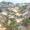 The colorful hillsides of Torrey Pines State Natural Reserve.- Razor Point Trail