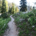 Exploring the Lakes Basin in Eagle Cap Wilderness.- Eagle Cap