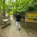 Walking the boardwalk at the Lake Michigan Recreation Area.- Lake Michigan Recreation Area + Nordhouse Dunes Wilderness Area
