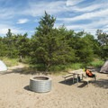 A typical site in the Jack Pines Campground.- Ludington State Park