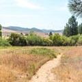 Minshall Trail leads through grassy meadows.- Minshall Trail to Stonewall Mine Loop