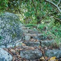 Stone steps are cut into the hillside for added stability.- Na Pohaku o Hauwahine