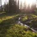 A small stream along the loop.- Wall Lake Loop