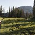 Hiking the Wall Lake Loop.- Wall Lake Loop