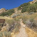 The Mount Olympus Trailhead sits along Wasatch Boulevard right in town. - Mount Olympus Wilderness