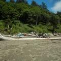Campsite at Third Beach.- Toleak Point