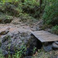 A small footbridge crosses a creek along the trail.- Illinois Crossing Trail + Primitive Camp